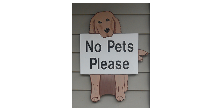 Pets not allowed in rooms or on the premises